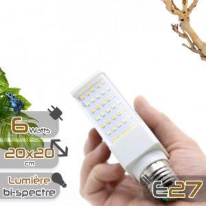ampoule-terraled-6w-eclairage-led-pour-terrariums
